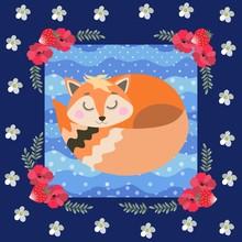 Beautiful Red Fox Sleeping In ...