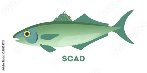 Fotografija Scad fish. Marine food. Idea of fishing