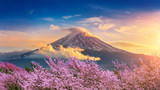 Fototapeta Sunset - Fuji mountain and cherry blossoms in spring, Japan.