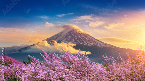 Leinwand Poster Fuji mountain and cherry blossoms in spring, Japan.