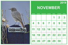 November 2019 Calendar On English With A Bird Perched On A November Decorated Fence, Landscape Orientation