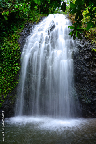 Carta da parati View of a cascading waterfall in Tahiti, French Polynesia