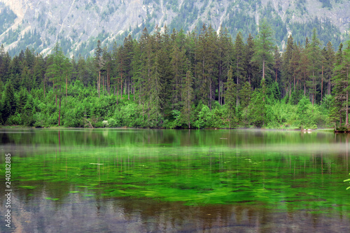 Keuken foto achterwand Meer / Vijver green lake in austria surrounded by mountains and forrest