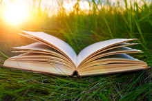 The Book On The Grass. Reading, Recreation, Education, Literature.
