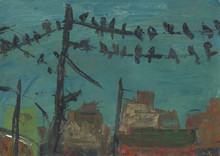 Pigeons Sit On Electric Wires....