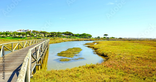 Marshes of Rio Piedras (River Stones) Natural Reserve in El Rompido, province of Huelva, Andalusia, Spain