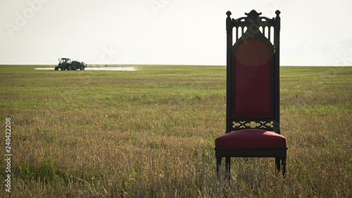Foto  Royal throne in summer field