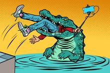 Crocodile Attacked A Man. Dangerous Selfie