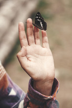 Purple Emperor Butterfly On Hand Of Girl In Summer Mountains. Apatura Iris. Young Woman Traveler With Butterfly, Exploring Wildlife Outdoors. Save Environment