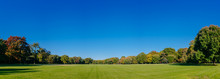 Panorama Of Empty Great Lawn Of Central Park Under Clear Blue Sky, In Manhattan, New York City, USA