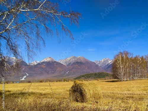 Fotografie, Obraz Haystack in the field