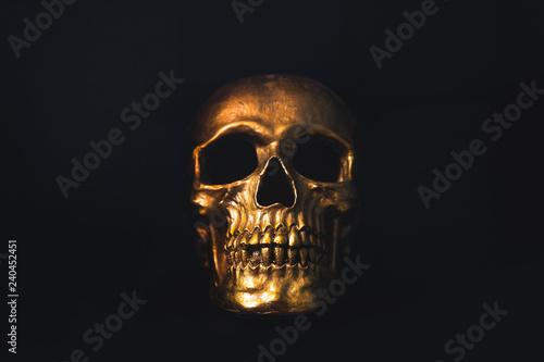 Gold skull on black background Canvas Print