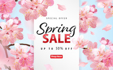 Enjoy Spring Sale With Blooming Beautiful Cherry Blossoms Or Sakura Flowers Background Template. Vector Set Of Exotic Tropical Garden For Web Design, Voucher, Brochures And Banners Design.