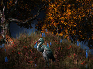 Fototapeta Drzewa Heron in the swamps