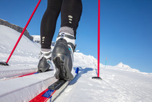 Cross-country Skiing: Young Wo...