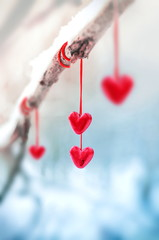 Red hearts on snowy tree branch in winter. Holidays happy valentines day celebration heart love concept.