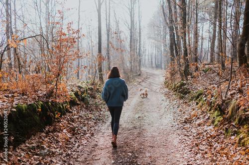 Fényképezés  Walking in nature