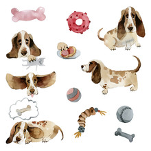 Watercolor Dogs Basset Hound