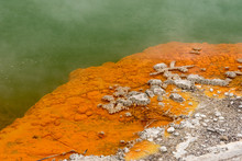 Closeup Of The Edge Of The Champagne Pool At The Wai-O-Tapu Geothermal Area Showing The Orange Orpiment And Stibnite Deposits, And Bubbling Carbon Dioxide.  Near Rotorua, New Zealand.