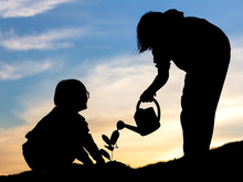 Silhouettes Of Two Children Watering Young Baby Plants Growing In Germination Sequence On Fertile Soil At Sunset Background