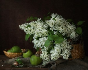 Fototapeta Do jadalni Still life with bouquet of white lilac