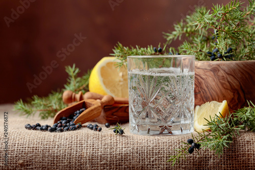 Cocktail gin, tonic with lemon and a branch of juniper with berries.