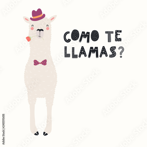 Printed kitchen splashbacks Illustrations Hand drawn Valentines day card with cute funny llama in hat, bow tie, Spanish text Como te llamas, Whats your name. Vector illustration. Scandinavian style flat design. Concept for invite, print.