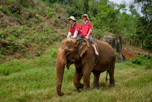 Thailand, Chiang Mai Province,...