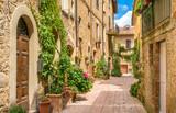 Fototapeta Perspektywa 3d - Scenic sight in Pienza, Province of Siena, Tuscany, Italy.