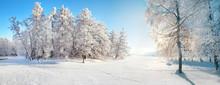 Winter Park. Panorama