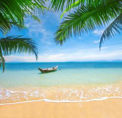 Obraz na Szkle Krajobraz tropical beach with coconut palm