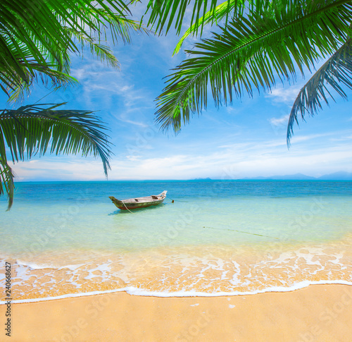 Foto  tropical beach with coconut palm