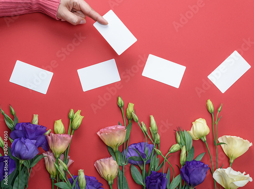 Fotografie, Obraz  female hand in pink sweater holding a blank white paper business card