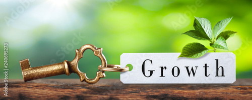 Fényképezés  Old Brass Key And Tag With The Word Growth On Wooden Table With Plant And Green