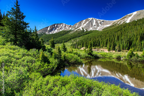 Fotografie, Obraz  Alpine Beauty