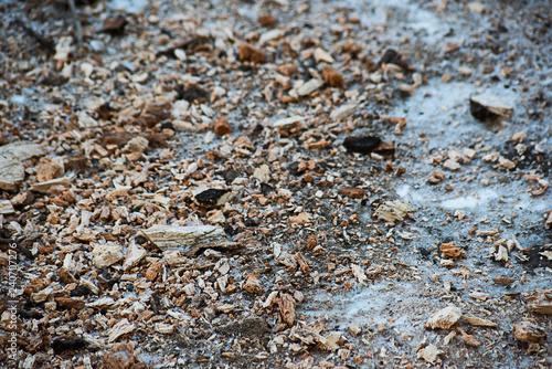 Fotografie, Obraz  Sawdust on an ice road
