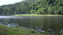 Natural Reservoir On The Backg...