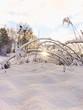 Śnieżna zima w Polsce (warmińsko - mazurskie)