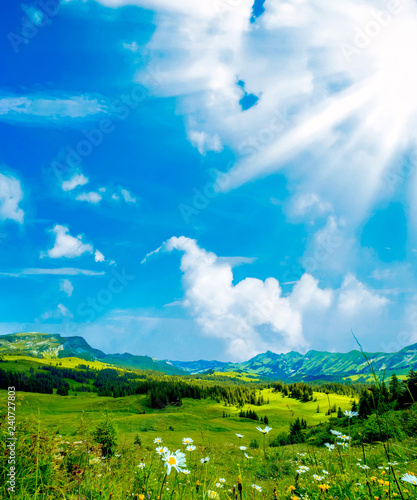 Fototapeta Summer time mountain nature landscape in Switzerland. Flowers at foreground. Beautiful sky above obraz