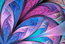 Beautiful Multicolored Fractal...