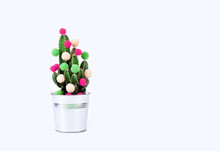 Cactus Tree Tropical Christmas Background New Year Flower Pot Balls Green Red Holiday Gift Party Funny Valentine Day Pail White