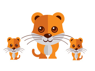 Cute cat vector on a white background