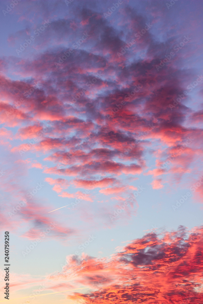 Pink clouds at sunset