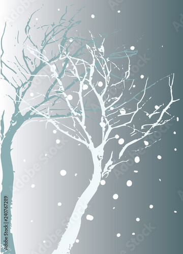 Fotografía  Winterlicher Hintergrund im frostigen Blau Baum mit Schatten