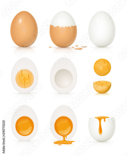 Fotografia Set of eggs with yolk and shell. Product for cooking breakfast.