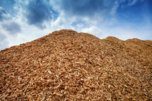 Heap Of Wood Chips Against Blue Sky