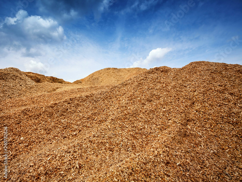 Fototapeta  big heap of wood chips against blue sky