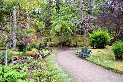 Papiers peints Jardin Terra Nostra botanical garden at Furnas, Azores, Portugal