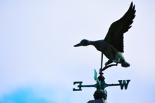 Weather Vane Duck