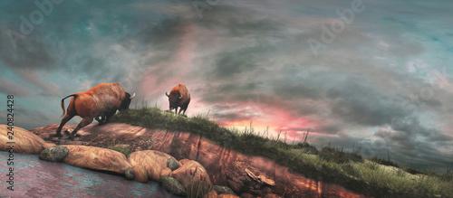 Buffalos on the river bank Canvas Print